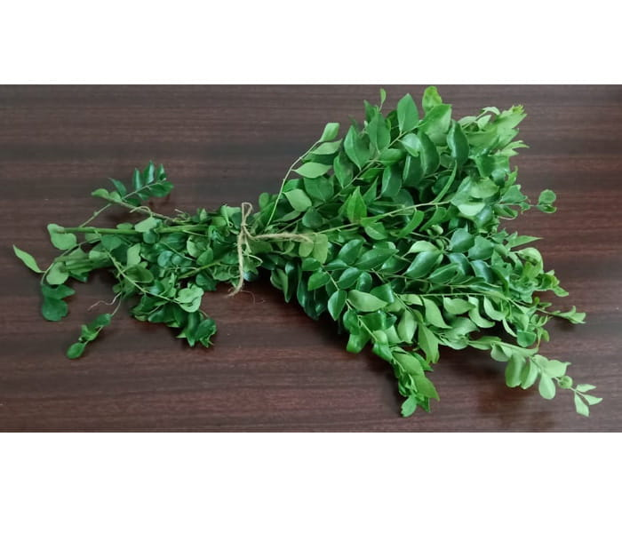 Curry Leaves Organic